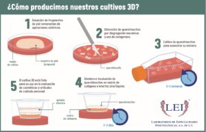 Producción de insumos para cultivo celular 3D